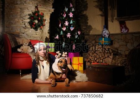 pet dressed in Christmas attire #737850682