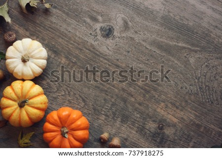 Thanksgiving season still life with colorful small pumpkins, acorns, fall leaves over rustic wood background