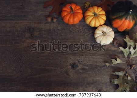 Fall Thanksgiving and Halloween pumpkins, leaves, acorn squash over dark wood table background shot from directly above #737937640