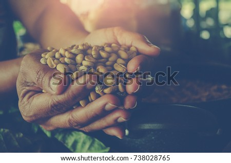 Hands holding scoop of coffee beans Autumn harvest and healthy organic food concept Toned picture Farm Agricultural products #738028765