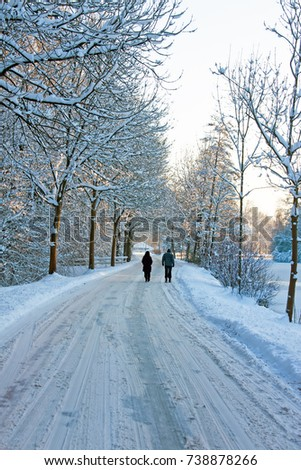 Snowy road in the countryside from the Netherlands in winter #738878266