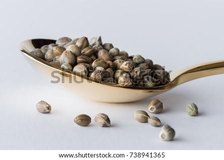 Hemp Seeds on Gold Spoon #738941365