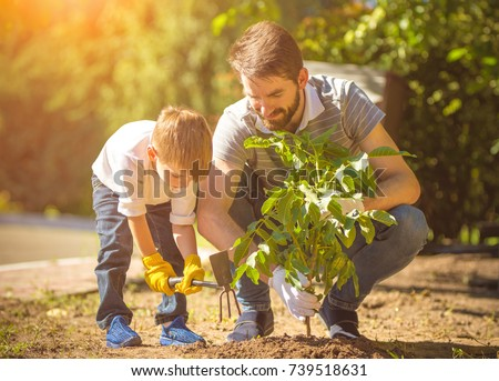 The little boy and a father plant a tree #739518631