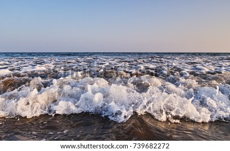 Sea #739682272