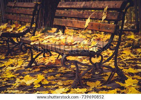 Ancient forged bench in a park under yellow foliage #739690852
