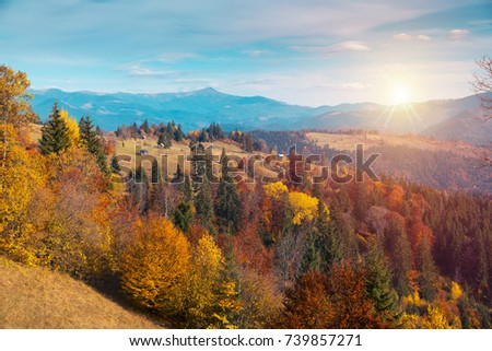Colorful autumn landscape in the mountain village. Foggy morning in the Carpathian mountains. Sokilsky ridge, Ukraine, Europe. #739857271