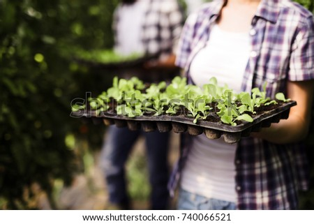 Picture of woman holding young plants in hands #740066521