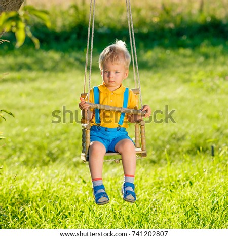 Portrait of toddler child swinging outdoors. Rural scene with one year old baby boy at swing. Healthy preschool children summer activity. Kid playing outside.  #741202807