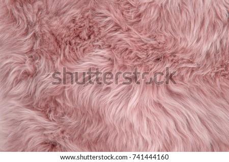 Pink sheepskin rug background. Wool texture. Close up sheep fur Royalty-Free Stock Photo #741444160