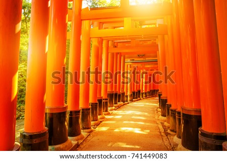 Thousands of vermilion torii gates of famous landmark Fushimi Inari taisha, south of Kyoto, Japan. Fushimi Inari is the most important shinto sanctuary and the oldest in Kyoto. Sunrise light shot.