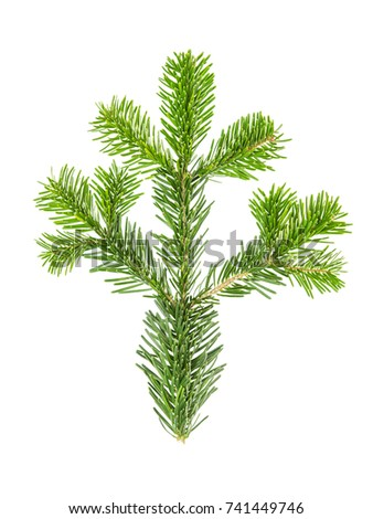 Spruce twigs. Branch of christmas tree isolated on white background #741449746