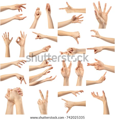 Collage of woman hands #742025335