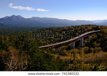 treescape and sky bridge , sea of tree in hokkaido mountain  #742380532