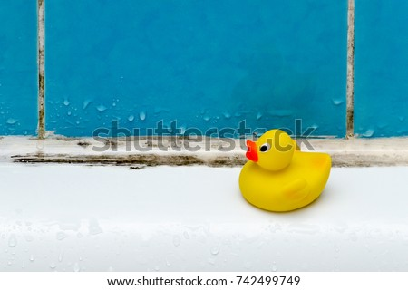 mold in bath, a duck toy, bathroom #742499749