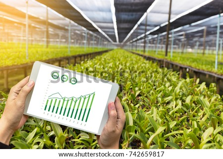 agriculture technology concept man Agronomist Using a Tablet in an Agriculture Field read a report #742659817