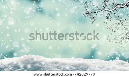 vibrant winter landscape, snow cover branch on abstract blurred background, empty winter background