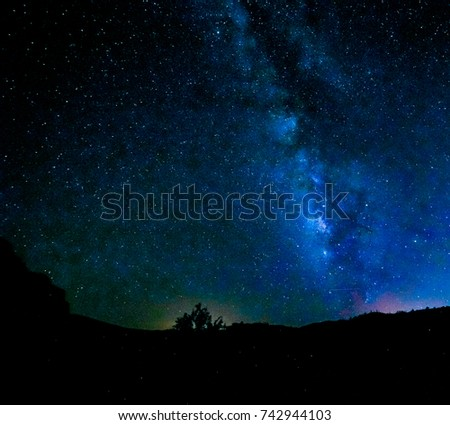 The Milky Way in a star studded sky with blue and green and a silhouette of a low lying desert plant. #742944103
