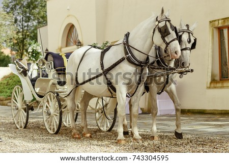 horse carriage Vienna Royalty-Free Stock Photo #743304595