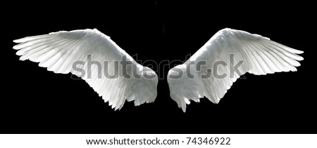 Angel wings isolated on the black background. Royalty-Free Stock Photo #74346922