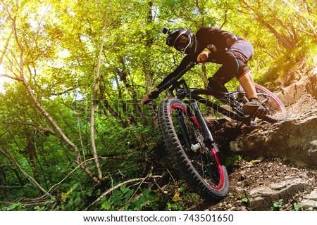 Sport. A cyclist on a bike with a mountain bike in the forest Royalty-Free Stock Photo #743501650