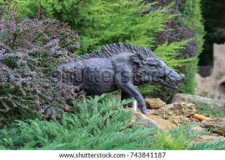 Wild boar walking through dead grass and pine trees #743841187