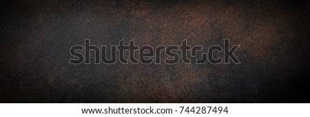 Empty brown rusty stone or metal surface texture. Long banner format. Royalty-Free Stock Photo #744287494
