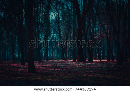 Mysterious fairy forest in a fog with red flowers lit by moonlight. Royalty-Free Stock Photo #744389194