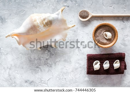 spa set with blue sea cosmetics for bath and shell on stone background top view mock-up #744446305