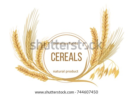 Wheat, barley, oat and rye set. Four cereals spikes with ears, sheaf and text premium foods, natural product. 3d icon vector. Round label. For design, cooking, bakery, tags, labels, textile #744607450
