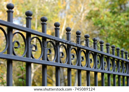 Image of a Beautiful decorative cast iron wrought fence with artistic forging. Metal guardrail close up. #745089124