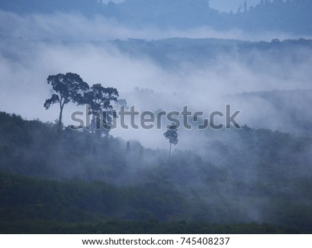 Fog and mountains on a cold day after rain. It is a picture that makes you feel happy and refreshed. Great atmosphere for traveling.,Soft focus and blur.