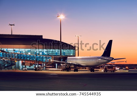 Preparation of the airplane before flight. Airport at the colorful sunset. #745544935