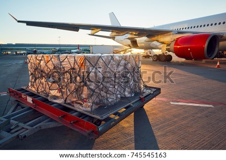 Busy day at the airport. Preparation of the airplane before flight.  Royalty-Free Stock Photo #745545163