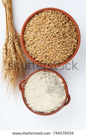 wheat grains and wheat flour in bowl  #746078458