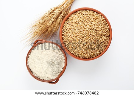 wheat grains and wheat flour in bowl  #746078482