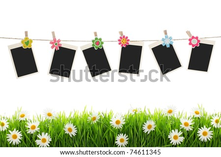 Blank photographs hanging over spring flowers