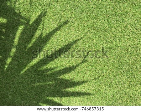 shadow of beautiful tree's leaves pattern on artificial green grass, using for background #746857315