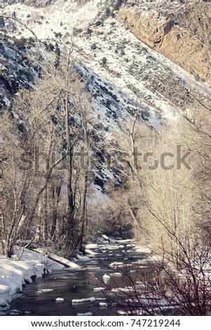 Big Cottonwood Canyon creek, Utah #747219244