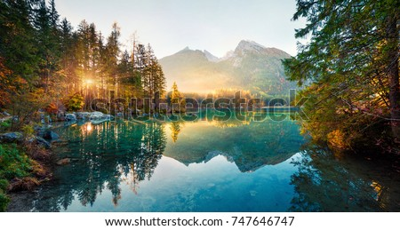Amazing autumn sunrise of Hintersee lake. Picturesque morning view of Bavarian Alps on the Austrian border, Germany, Europe. Beauty of nature concept background. Royalty-Free Stock Photo #747646747
