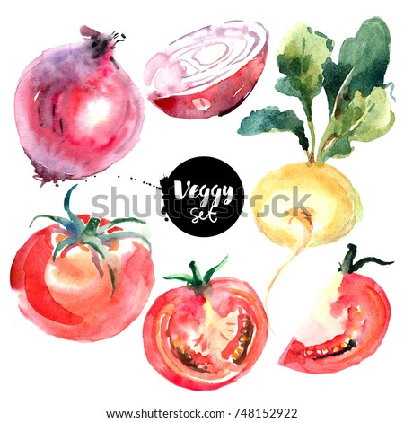 Watercolor vegetables set. Painted isolated natural organic fresh eco food illustration on white background. Veggies design of tomato, red onion, turnip