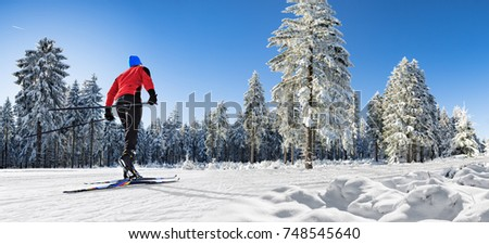 A man cross-country skiing on the langlauf trail in wintry forest #748545640