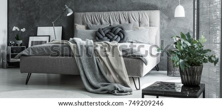 Plant in flowerpot on design table in bedroom with braided pillow on king size bed #749209246