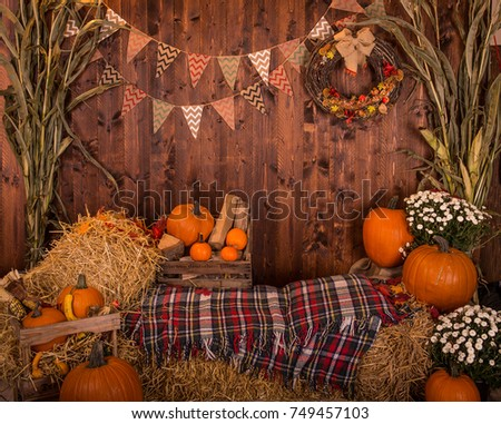 Fall Festival Background