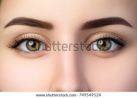 Close up view of beautiful brown female eyes. Perfect trendy eyebrow. Good vision, contact lenses, brow bar or fashion eyebrow makeup concept #749549524
