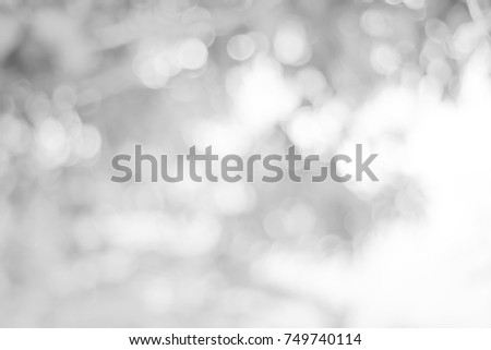 white blurred backdrop of nature, circle white wallpaper, gray bokeh background. #749740114