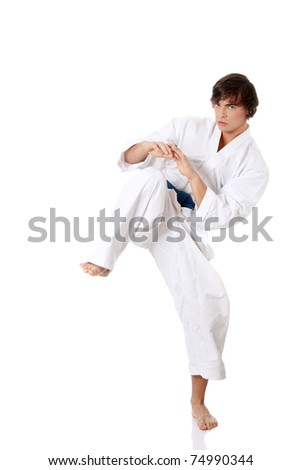 Karate. Man in a kimono , isolated on the white background #74990344