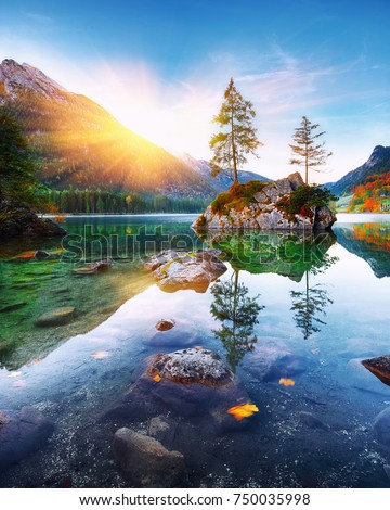 Fantastic autumn sunset of Hintersee lake. Beautiful scene of trees on a rock island. Location: resort Ramsau, National park Berchtesgadener Land, Upper Bavaria, Germany Alps, Europe #750035998