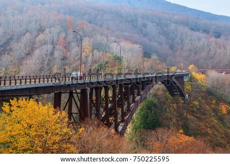 View Jogakura bridge and colorful mountain  in Autumn season, Aomori, Japan #750225595
