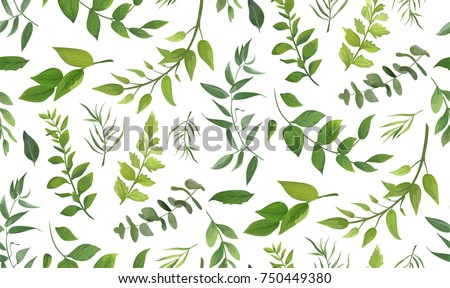 Seamless pattern of Eucalyptus palm fern different tree, foliage natural branches, green leaves, herbs, tropical plant hand drawn watercolor Vector fresh beauty rustic eco friendly background on white Royalty-Free Stock Photo #750449380