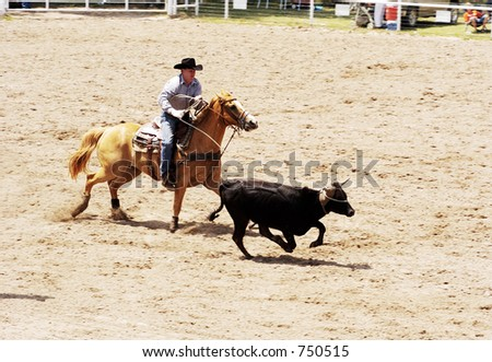 The calf roping event at a rodeo. #750515